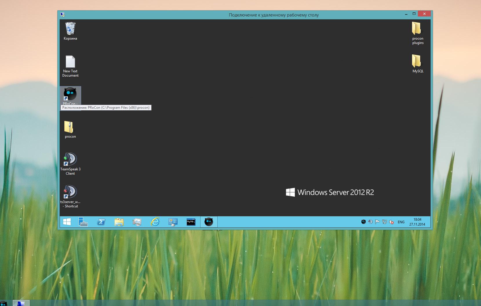 2014-11-27 17-04-03 Скриншот экрана.png