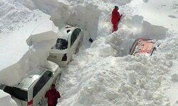 sneg.jpeg